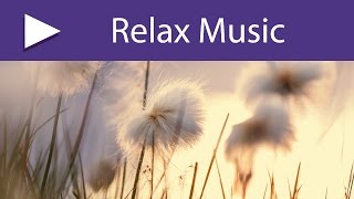 Tranquility Base: Serenity Spa Music Relaxation, Sounds of Nature Background Music