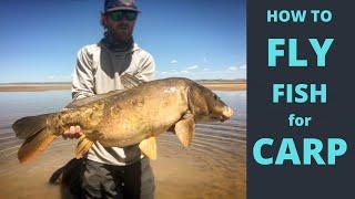 CARP FLY FISHING - how to