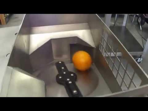 FMC JBT Food Tech Fresh N Squeeze Citrus Juicer Commercial Orange Juice Machine