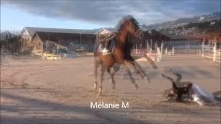 chute a cheval