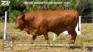 Coro 2355 b4 fiv