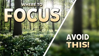 How to FOCUS in Landscape Photography - Get SHARP Photos