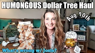 HUMONGOUS Dollar Tree Haul💕AMAZING Items💕Aug 10th