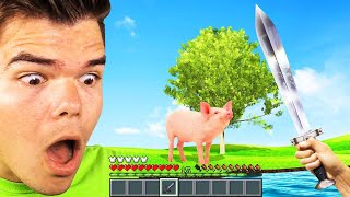 MINECRAFT But Its REAL LIFE! (Ultra Realistic)