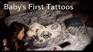 Tattooing My Dog