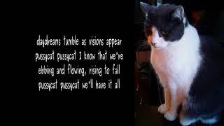Pussycat (2)