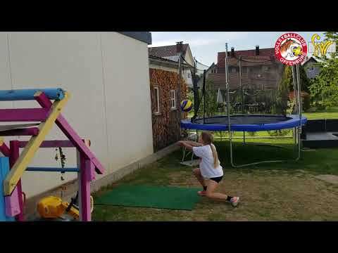 Challenge Mini Tiger Volleyball