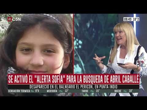 """""""Alerta Sofía"""": la buscan por tierra, aire y """"casa por casa"""""""
