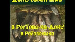 Ростовская область рыбалка в рогожкино