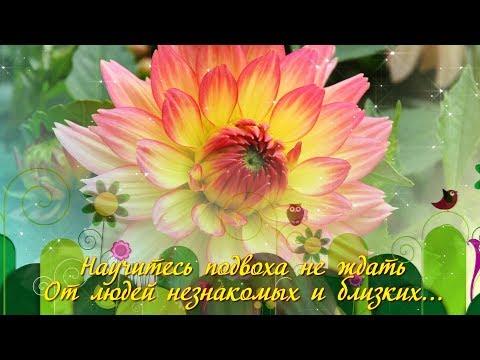 Юлия авструб песенка про счастье текстом