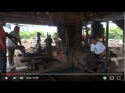 Mexican Saw Mill, see any OSHA violations?