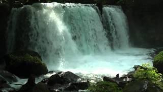 奥入瀬渓流 ~銚子大滝~ ゆるりら動画