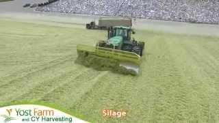 Yost Farm CY Harvesting Silage in 2015