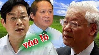 Đại án AVG- khúc củi Nguyễn Bắc Son sắp vào lò, Trương Minh Tuấn rúm ró như vó cúm