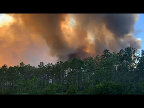 1,600 evacuated as crews battle Florida wildfires