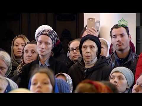 Волонтеры белой церкви