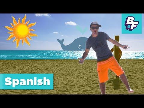 Learn Spanish beach vocabulary with BASHO & FRIENDS - La Playa