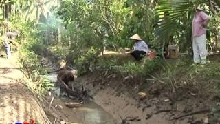 Văn Hóa Dừa Bến Tre   Phần 1