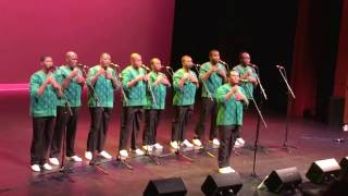 'Homeless' by Ladysmith Black Mambazo 2017
