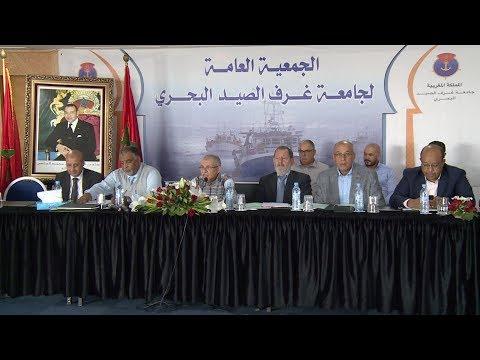 العرب اليوم - شاهد: دعوة لمراجعة قوانين صيد الأخطبوط في المغرب