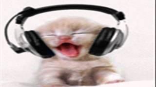 Dugem - Kokok Ayam - By' Cat' Funk Versiaon - RemiX House Musi