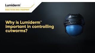 Why is Lumiderm important in controlling cutworms