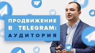 Продвижение в Telegram: обзор масштабного исследования аудитории