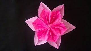 Quick way to make paper flowers step by easily