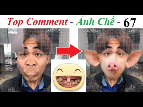 💥Reaction Top Comment 💓  Ảnh Chế (P 67) Trư Bát Giới, Minecraft Zombie, Plant and Zombie