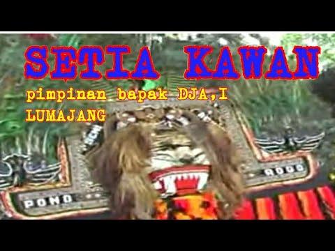 Download REOG SETIA KAWAN PIMPINAN BAPAK DJAI Official Musik Video HD Mp4 3GP Video and MP3