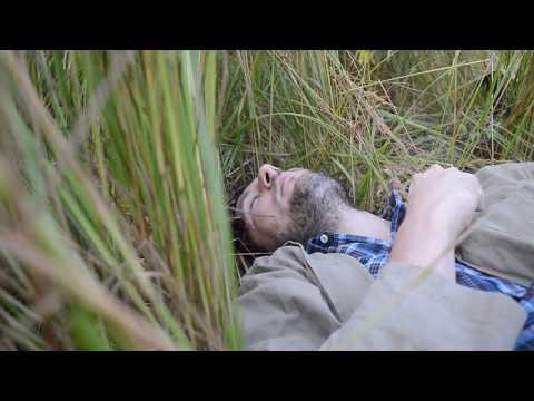 Propolis e alcool a emorroidi