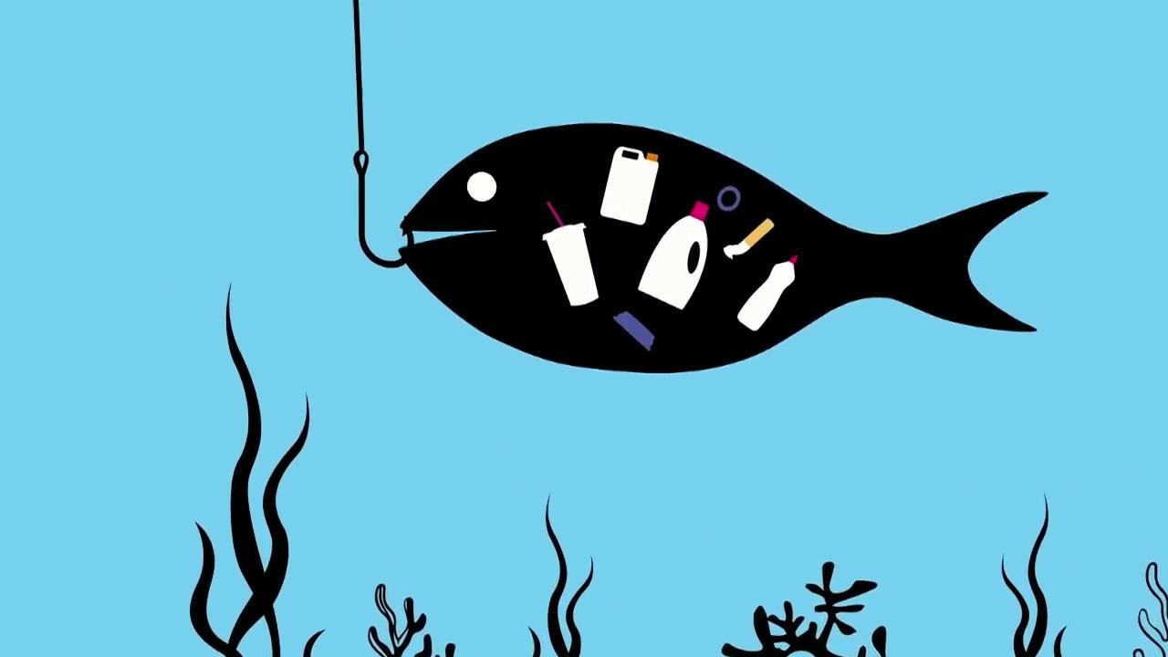 Πώς τα θαλάσσια απορρίμματα επιστρέφουν πάλι σε εμάς