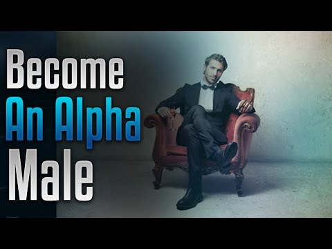 The Alpha Males - Music Profile   Bandmine com