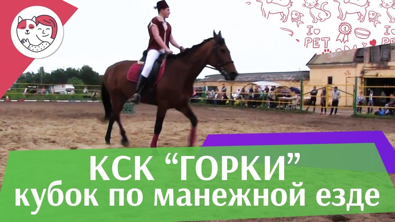 Летний кубок КСК Горки по манежной езде КЮР часть 15 на ilikepet