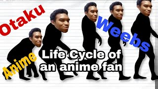 Life Cycle of an Anime Fan Reaction