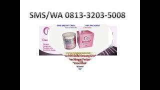 Oris Pengencang payudara alami | pengencang payudara | krim pengencang alami