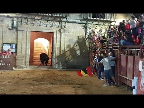 TORO SUBE AL AYUNTAMIENT, Morales de Toro 2019