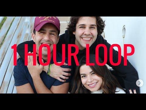 DAVID AND JOSH SING ABOUT MEGAN (MIRANDA COSGROVE) 1 HR LOOP (видео)