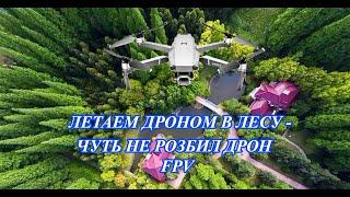 Летаем FPV дроном в лесу между деревьями - увидел нечто...
