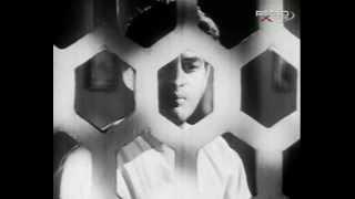 Mere Pyar Mein Tujhe Kya Mila - Suhagan (1964) - YouTube