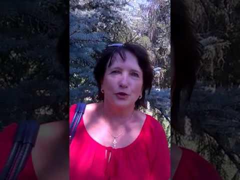 Зрение  Выпадение волос  Изжога  Боль в суставах  Лишний вес