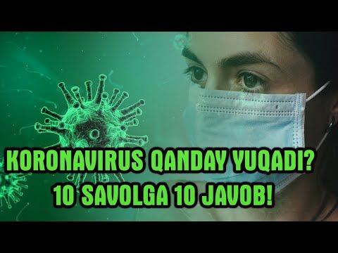 """""""KoronaVirus""""  haqidagi 10 savolga 10 javob! Bu Virus qanday yuqadi?"""