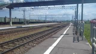 Электровоз ЧС7-233 с поездом 119 Саранск - Москва