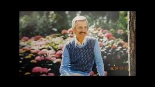 THERE'S A KIND OF HUSH / PAUL MAURIAT(DISCO VERSION)