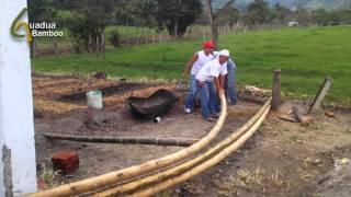 Bending Dry Bamboo Poles