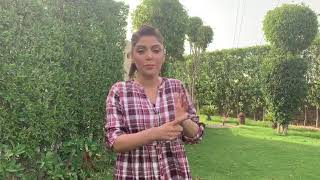 """Hadiqa Kiani wishes """"ALL THE BEST"""" to the entire team of #PareyHutLove"""