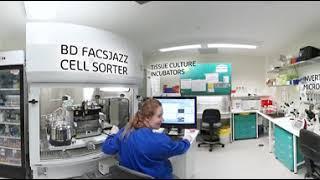 CHIRI Tissue Culture Laboratory | 360° virtual experience