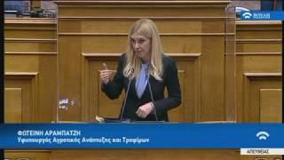Ομιλία ΥφΑΑΤ, Φ. Αραμπατζή για την Αντιμετώπιση των Ελληνοποιήσεων με Νομοσχέδιο του ΥΠΑΑΤ (28/5/20)