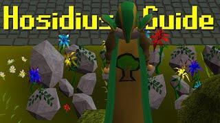 osrs hosidius favour guide - TH-Clip