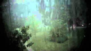 RAIN - Alanis Morissette